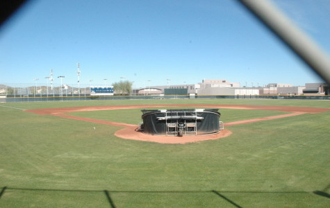 DV Softball Preview