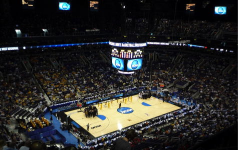 The madness behind March Madness