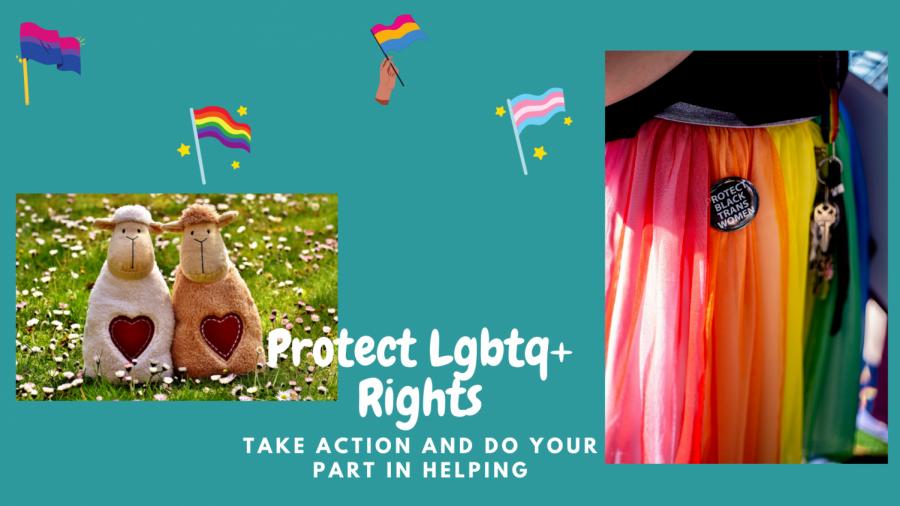 Protect+LGBTQ%2B+Rights