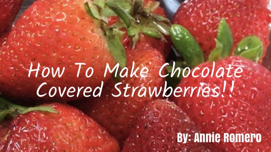 How+To+Make+Chocolate+Covered+Strawberries